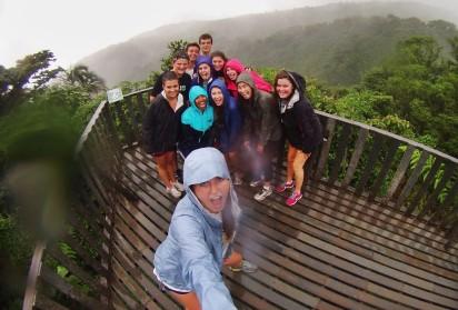 Cloudforest shot 2